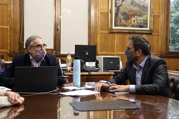 Ley de Bosques: Ambiente y Agricultura estudian una propuesta de promoción forestal vinculada con la ganadería - Argentina Forestal